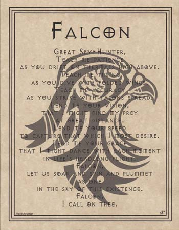 Falcon Prayer